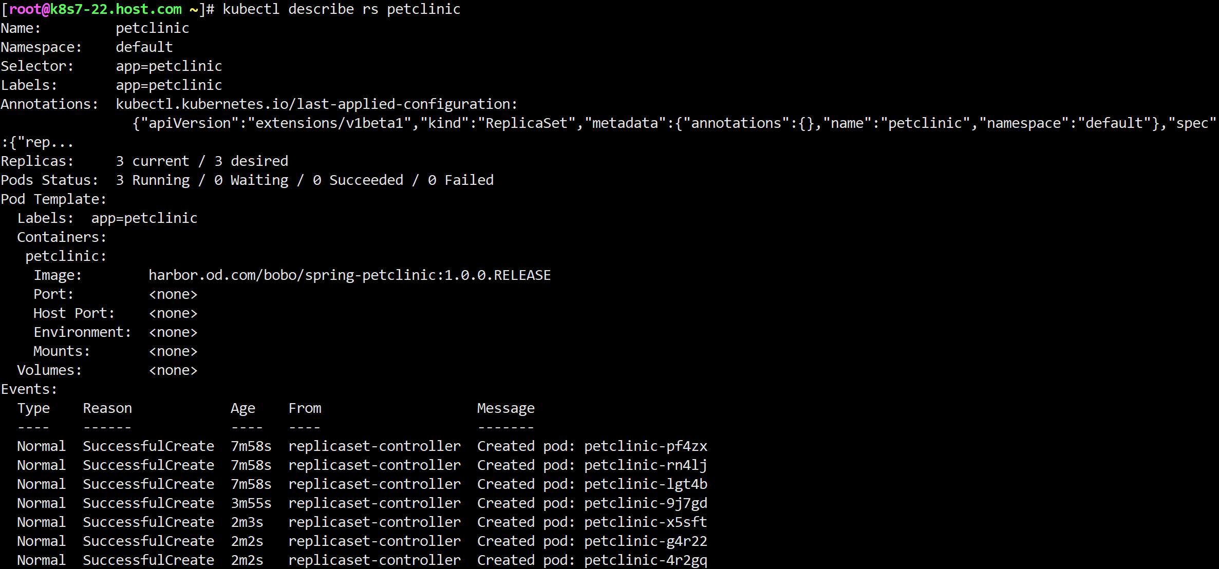 应用集群抽象~ReplicaSet